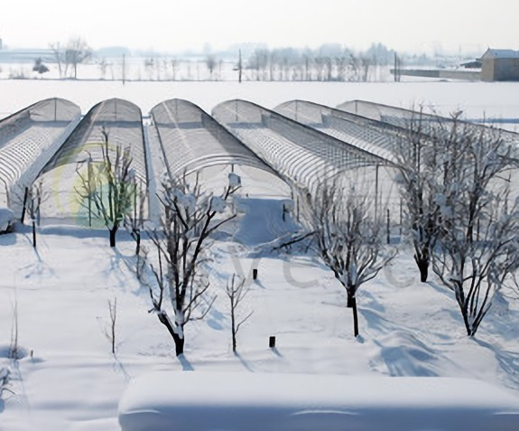 Cold weather greenhouses