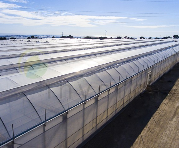 Greenhouses temperate climate